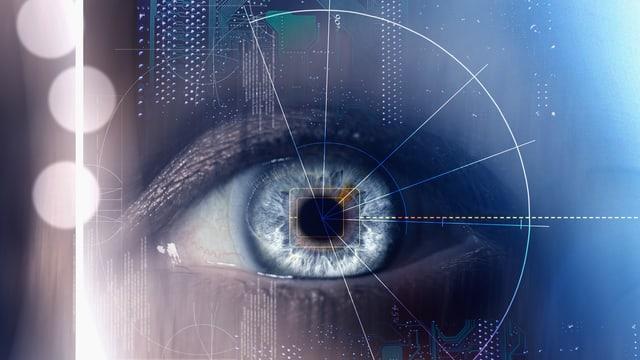 SRF Kultur: Big Data: Was Computer besser sehen