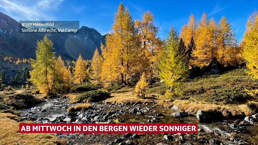 Blick auf goldige Lärchen und blauen Himmel in den Bergen. Davor ein Bach.