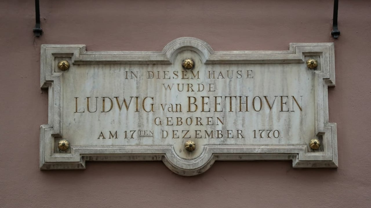 Ein Popstar wird 250 - Ludwig van Beethoven in Zahlen