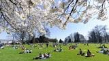 Wann beginnt der Frühling? (Artikel enthält Audio)