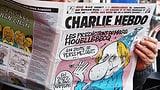 Die politische Karikatur hat wichtige, bissige Stimmen verloren (Artikel enthält Bildergalerie)