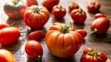 Video «Massenware Tomate - Geschmacklos und trotzdem gesund?» abspielen