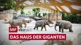 Das Haus der Giganten (Artikel enthält Video)