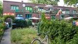«Darf der Nachbar nackt im Garten herumlaufen?» (Artikel enthält Audio)