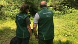 «Das grösste Problem für den Wald sind die Mountainbiker» (Artikel enthält Audio)