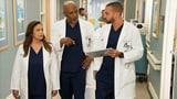 Wann zeigt ihr endlich wieder neue Folgen von «Grey's Anatomy»?