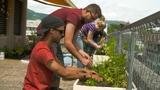Video «Multikulti: Wie die Welt in einem Garten zusammenlebt» abspielen