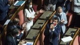 Senat hebt Immunität Salvinis auf (Artikel enthält Video)