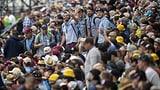 Zehntausende Schwingfans haben das Zuger Festgelände eingenommen (Artikel enthält Audio)