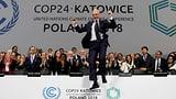 «1000 Schritte für Klimaschutz» (Artikel enthält Video)