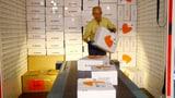 Zalando gewinnt Millionen neue Kunden (Artikel enthält Video)
