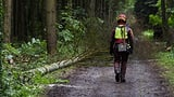 Corona hinterlässt Spuren im Wald (Artikel enthält Audio)