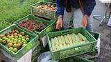 Neue Plattform bringt Bauern und Gastronomen zusammen (Artikel enthält Audio)