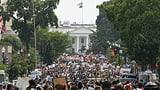 Washington erwartet bislang grösste Demonstration gegen Rassismus (Artikel enthält Video)