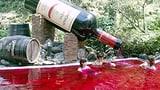 Japan: Baden in Wein, Schokolade und Grüntee (Artikel enthält Audio)