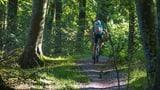 St. Galler Polizei plant Stichproben im Wald (Artikel enthält Audio)