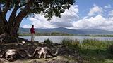 Serengeti – Kein Platz für Menschen? (Artikel enthält Video)