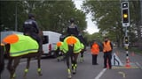 «Der Polizist war gezwungen, die Warnschüsse abzugeben» (Artikel enthält Video)
