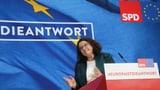 Soll die SPD in den nächsten Baum fahren? (Artikel enthält Video)
