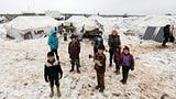 «Die Menschen leben unter schrecklichen Bedingungen» (Artikel enthält Audio)