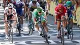 Video «Zeitmessung bei Radstrassenrennen – komplizierter als gedacht» abspielen