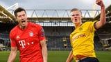 Gipfeltreffen: Haaland und Lewandowski im Fokus des Spitzenspiels (Artikel enthält Video)