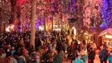Record da visitaders al «Guaud magic» a Lai (Artitgel cuntegn galaria da maletgs)