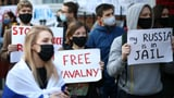 Mehr als 1000 Festnahmen bei Protesten für Nawalny (Artikel enthält Video)