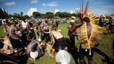 Indigene forden Schutz ihres Lebensraums (Artikel enthält Audio)