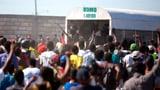 «In Haiti steigt man in die Politik ein, um sich zu bereichern» (Artikel enthält Audio)