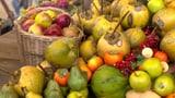 Gesunde Ernährung, gesunder Geist (Artikel enthält Video)