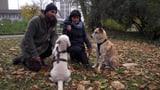Video «Tiergeschichten (5/10): Tierische Berufe» abspielen