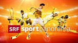 Video ««sportpanorama» vom 23.12.2018» abspielen