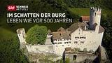 Macht «Schweiz aktuell» wieder ein Sommerprojekt?