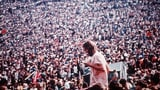 Bei SRF kommen Festival-Fans trotz Corona auf ihre Kosten
