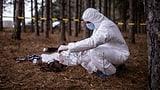 Body-Farmen: Wo Leichen für die Wissenschaft verwesen (Artikel enthält Video)