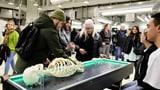 Basler Museumsnacht lockt so viele Menschen an wie noch nie (Artikel enthält Audio)