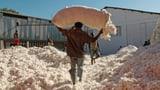 «Fair Traders»: Jenseits von Ausbeutung und Geldgier (Artikel enthält Video)