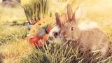 Testen Sie Ihr Oster-Wissen in unserem Quiz (Artikel enthält Bildergalerie)