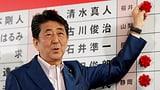 Permier Abe mit getrübtem Wahlsieg (Artikel enthält Video)