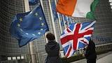 Grünes Licht für neue Brexit-Verhandlungen (Artikel enthält Audio)