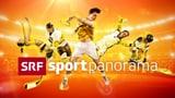Video ««sportpanorama» vom 13.01.2019» abspielen