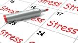 Video «Stressmessung - Der Belastung auf der Spur» abspielen