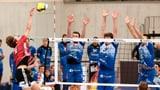 Lieber Volleyball als Katzen hüten (Artikel enthält Audio)