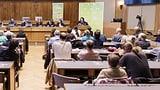 Grüne gewinnen wohl Nationalratssitz im Wallis (Artikel enthält Video)