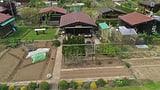 Familiengärten im Boom: Junge entdecken den Schrebergarten