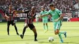 Fernandes' Frankfurt bezwingt Zubers Hoffenheim