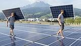 Regierung muss künftig «umweltfreundlicher» einkaufen (Artikel enthält Audio)