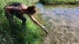 Jugendliche putzen am Sonntag freiwillig das Aareufer  (Artikel enthält Audio)