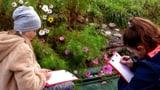 Biodiversität im Schülergarten (Artikel enthält Video)